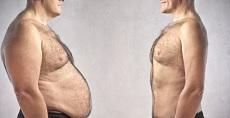 مجموعه داده ویژگی های افراد چاق