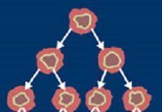 مجموعه داده بیماران خانم مبتلا به سرطان سینه